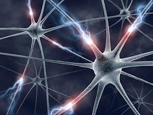neurons 300x225
